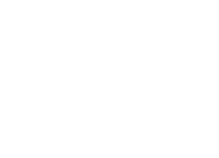 Azzip Pizza Logo White